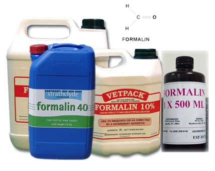 formalin1